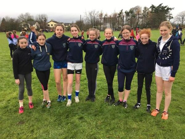 South Leinster Cross Country